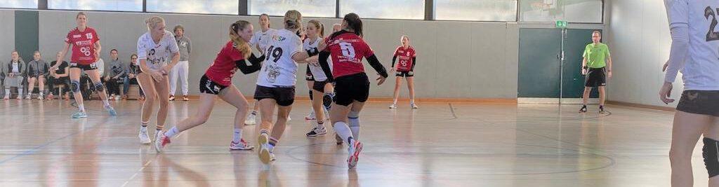 HSG Bergedorf-VM